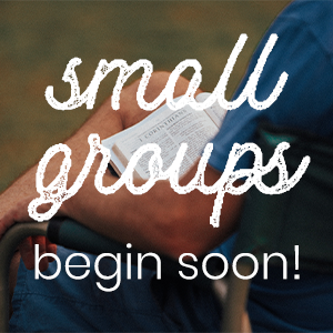 Small Groups are Returning